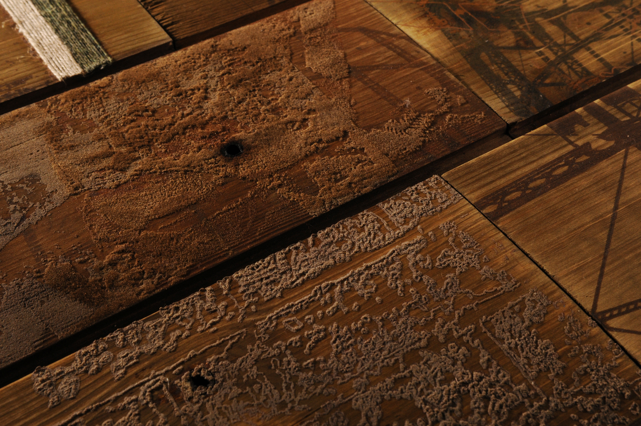 Emerging trend printed and topical texture treatment on Worn wood floors