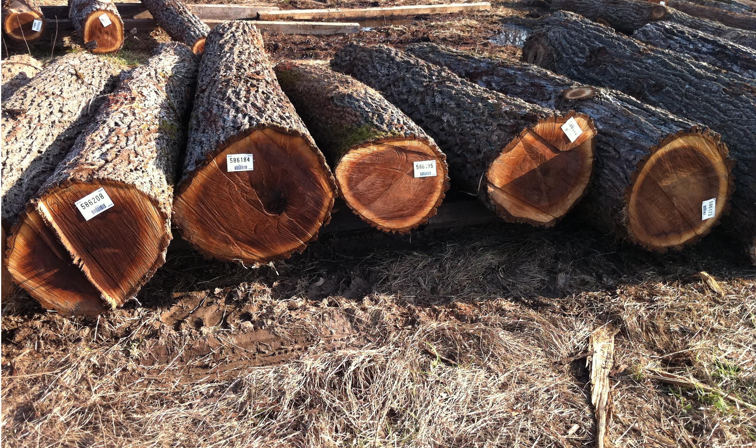 Hardwood Floor Of The Week 12 Woodflooringtrends